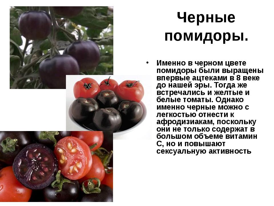 Черные помидоры. Именно в черном цвете помидоры были выращены впервые ацтекам...