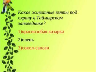 Какое животные взяты под охрану в Таймырском заповеднике? 1)краснозобая казар