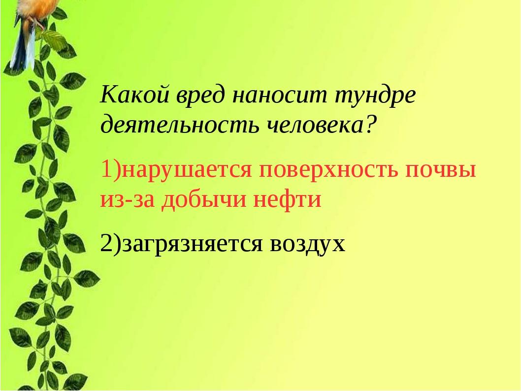 Какой вред наносит тундре деятельность человека? 1)нарушается поверхность поч...