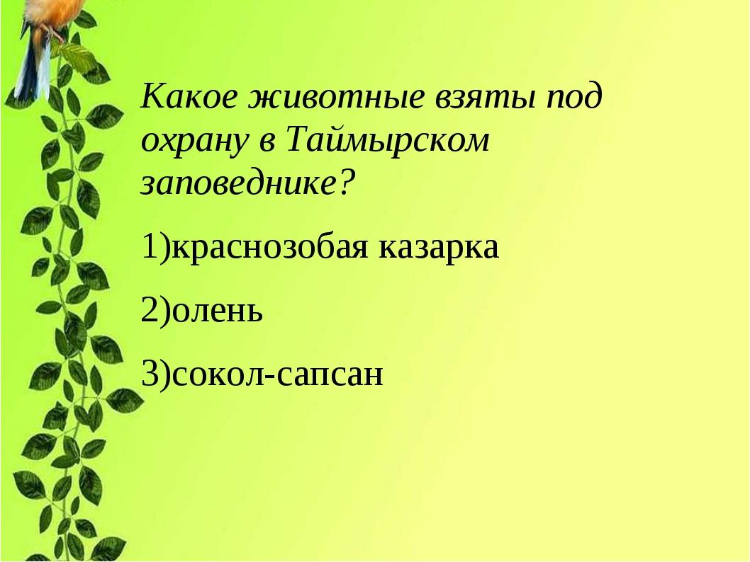 Какое животные взяты под охрану в Таймырском заповеднике? 1)краснозобая казар...