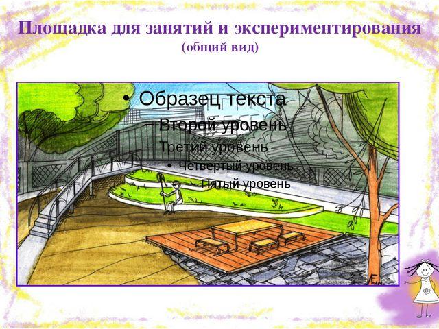 Площадка для занятий и экспериментирования (общий вид)