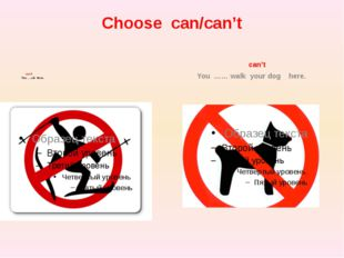 Choose can/can't can't You …..ski there. can't You …… walk your dog here.