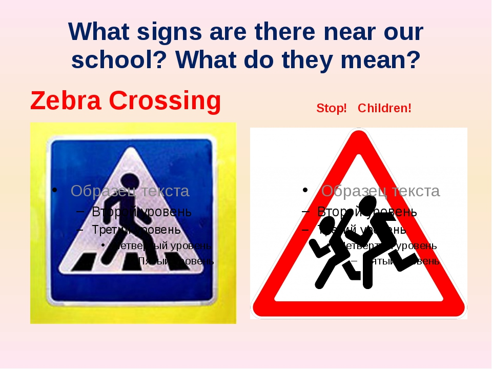 What signs are there near our school? What do they mean? Zebra Crossing Stop!...