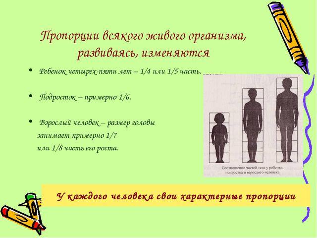 Пропорции всякого живого организма, развиваясь, изменяются Ребенок четырех-пя...