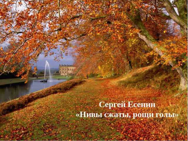 Сергей Есенин «Нивы сжаты, рощи голы»