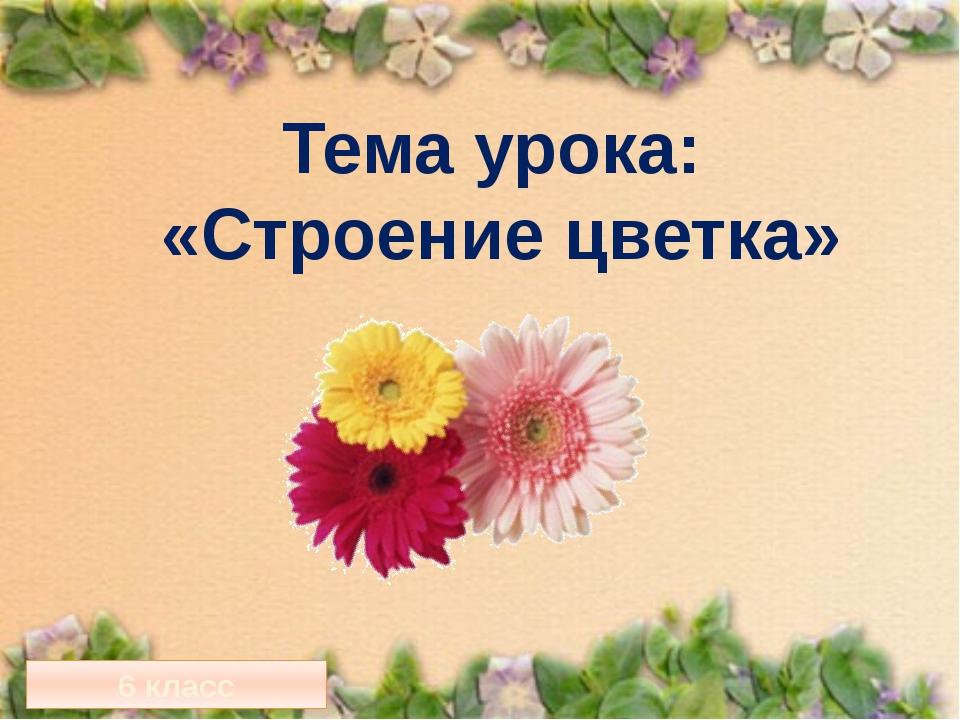 Тема урока: «Строение цветка» 6 класс