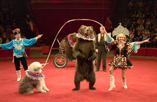 Most-dangerous-circus-animal1.jpg