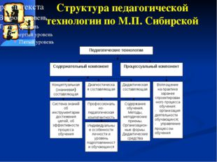 Структура педагогической технологии по М.П. Сибирской Педагогические технолог