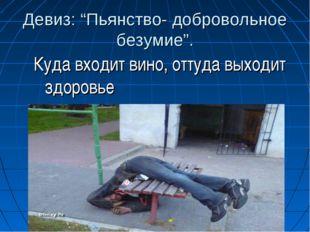 """Девиз: """"Пьянство- добровольное безумие"""". Куда входит вино, оттуда выходит здо"""