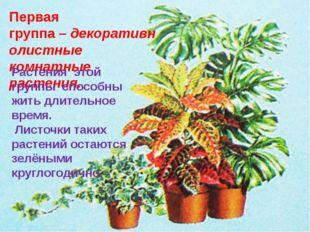 Первая группа–декоративнолистные комнатные растения. Растения этой группы с