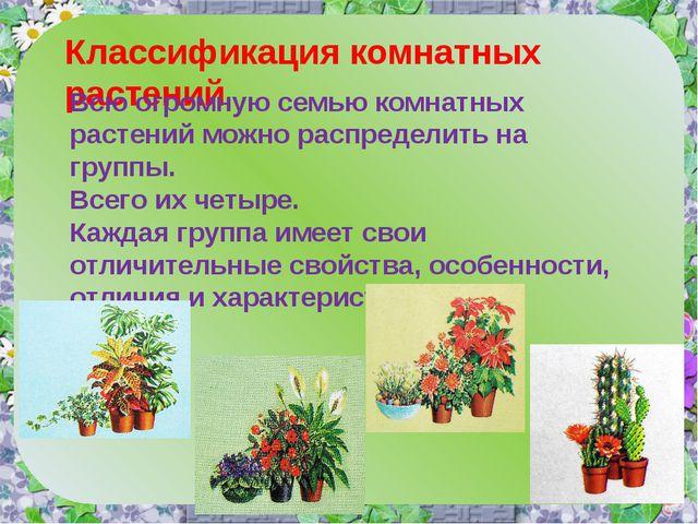 Классификация комнатных растений Всю огромную семью комнатных растений можно...