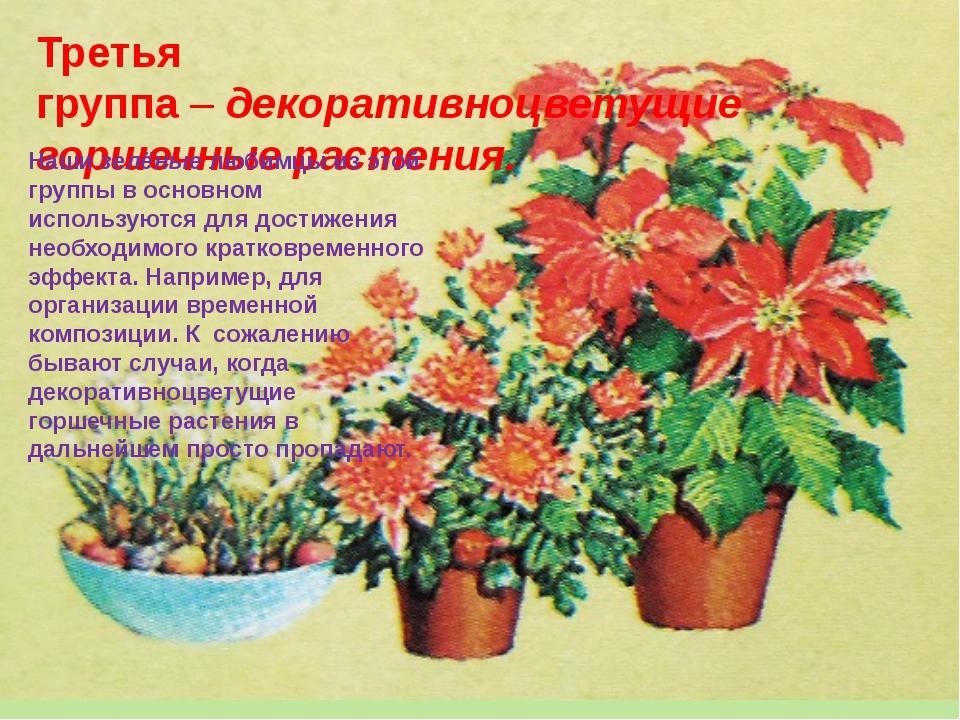 Третья группа–декоративноцветущие горшечные растения. Нашизелёныелюбимцы...