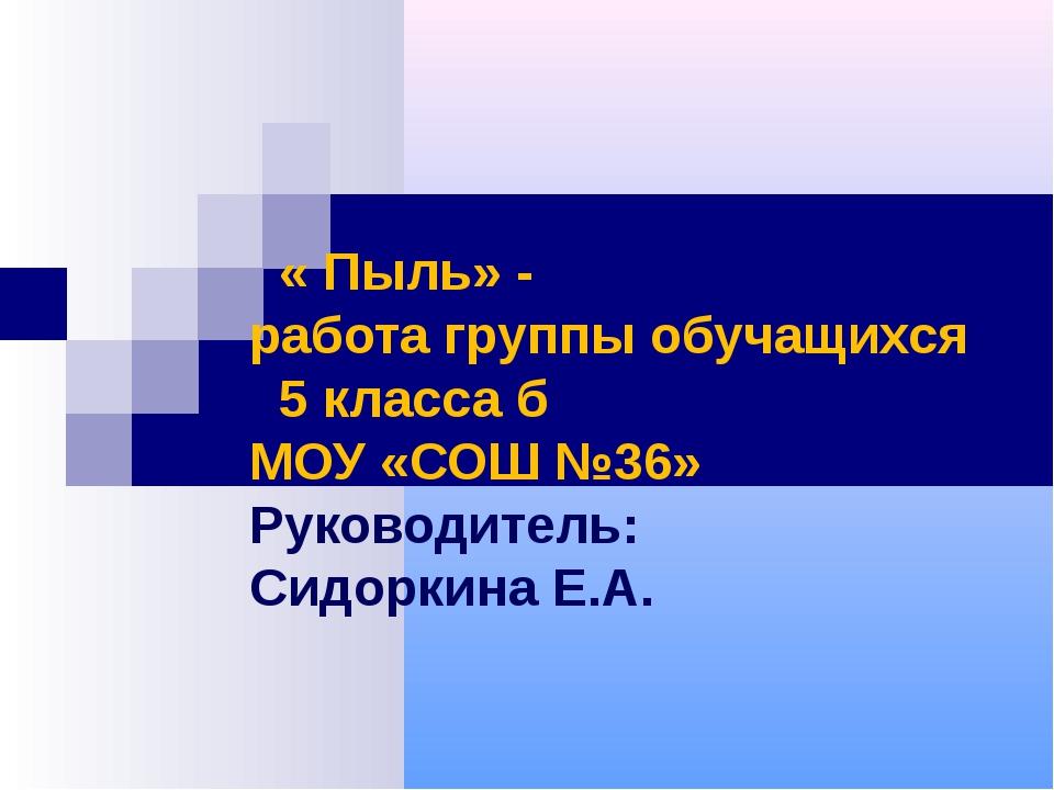 « Пыль» - работа группы обучащихся 5 класса б МОУ «СОШ №36» Руководитель: Си...