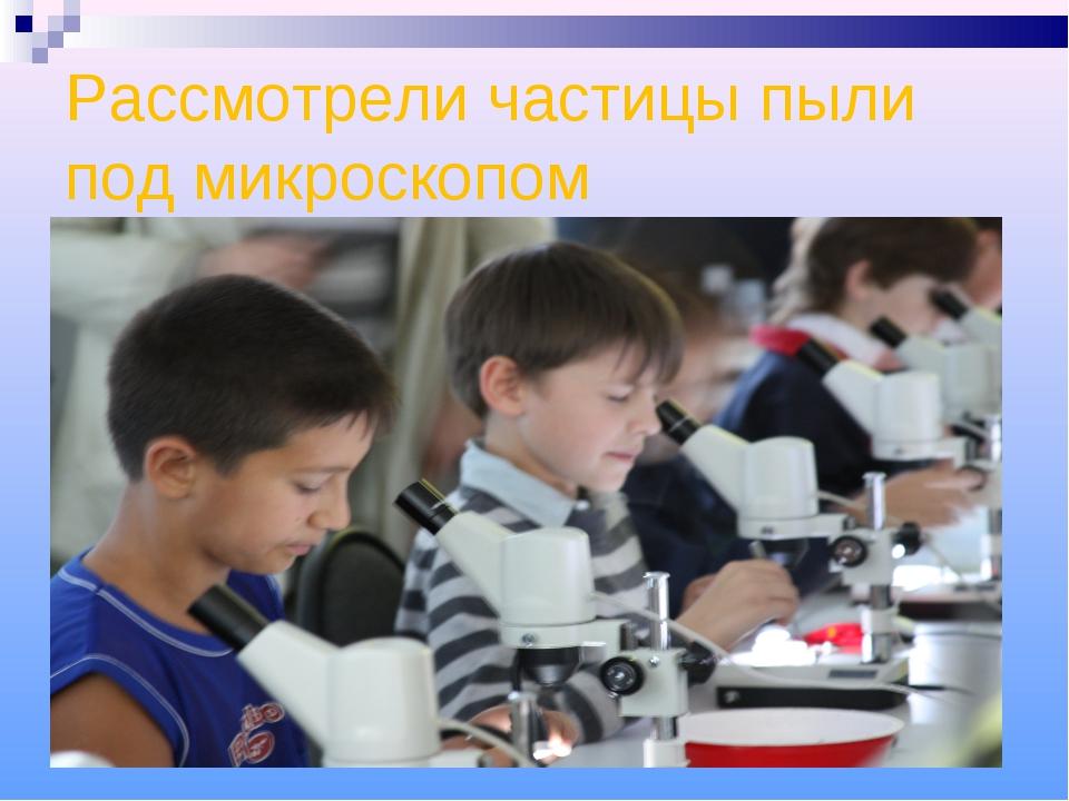 Рассмотрели частицы пыли под микроскопом