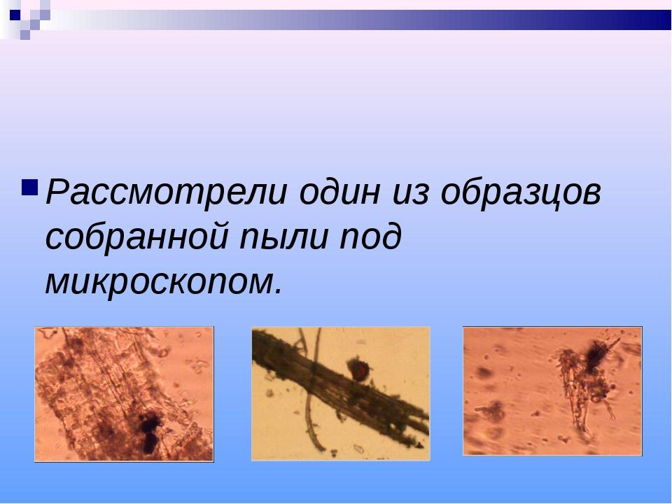 Рассмотрели один из образцов собранной пыли под микроскопом.