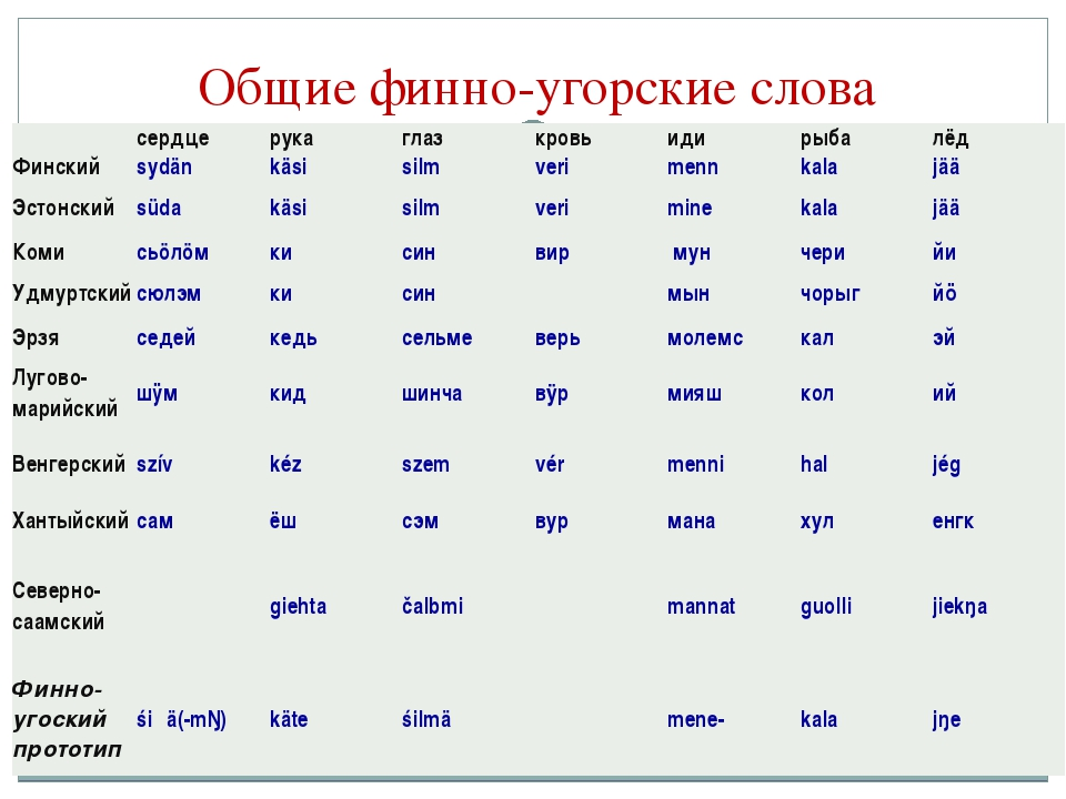 Общие финно-угорские слова сердцерукаглазкровьидирыбалёд Финскийsydä...