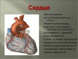 При постоянном употреблении алкоголя, в начале сбивается ритм сердца, переход