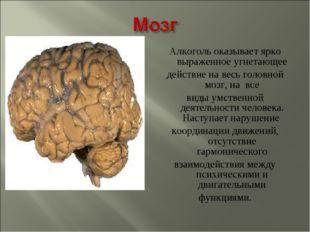 Алкоголь оказывает ярко выраженное угнетающее действие на весь головной мозг,