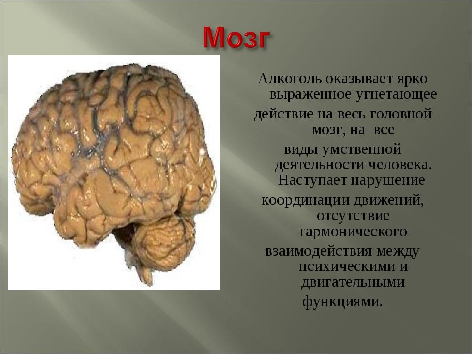 Алкоголь оказывает ярко выраженное угнетающее действие на весь головной мозг,...