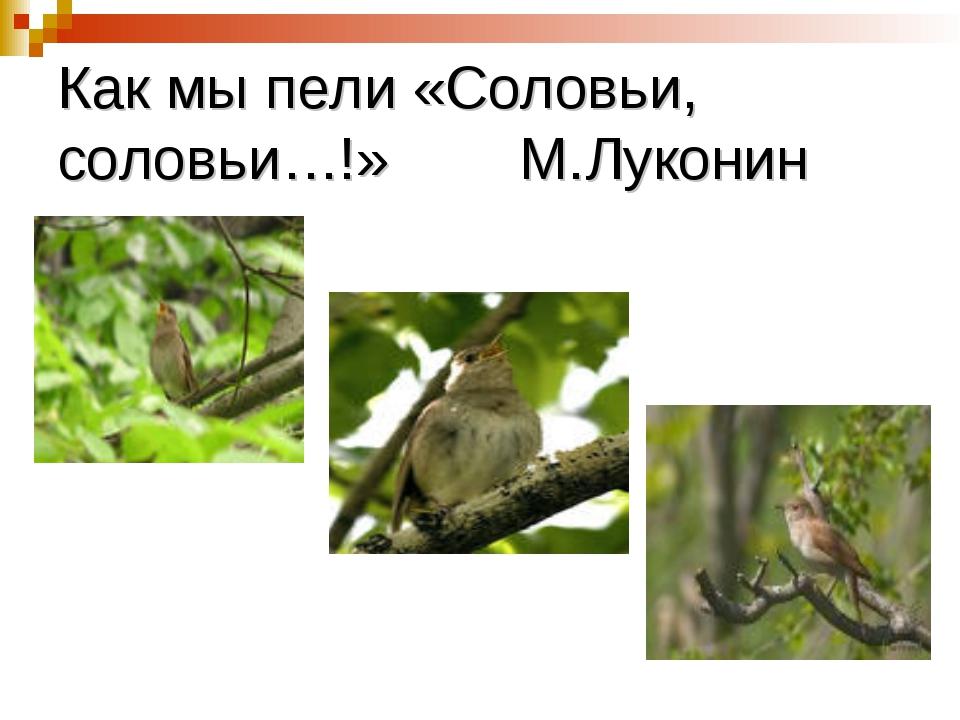 Как мы пели «Соловьи, соловьи…!» М.Луконин