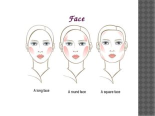 Face A round face A long face A square face