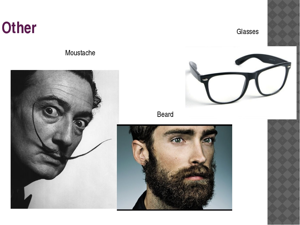 Other Moustache Beard Glasses