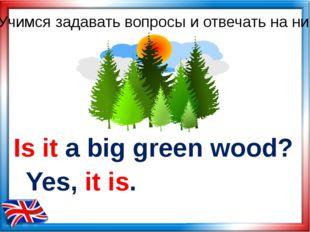 Учимся задавать вопросы и отвечать на них Is it a big green wood? Yes, it is.