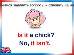 Is it a chick? No, it isn't. Учимся задавать вопросы и отвечать на них