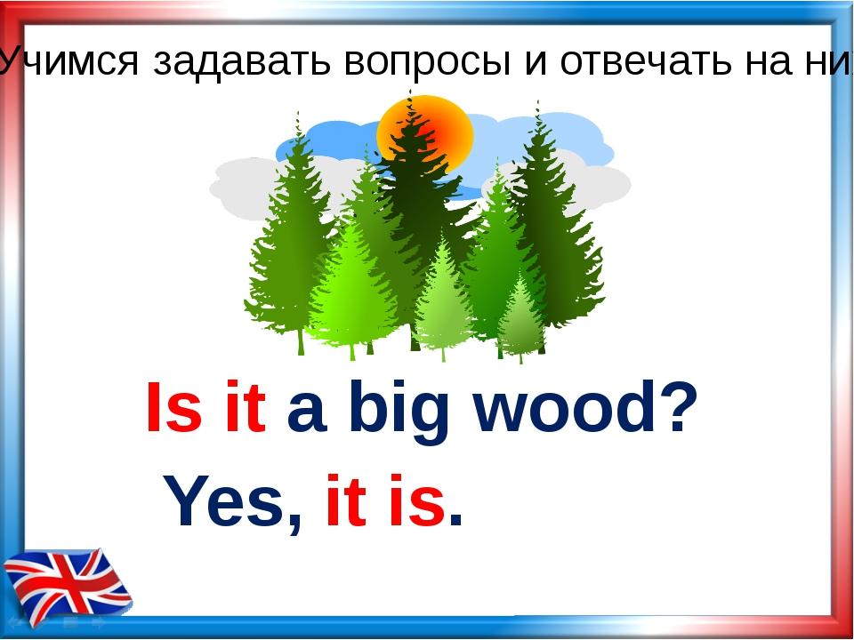 Is it a big wood? Yes, it is. Учимся задавать вопросы и отвечать на них