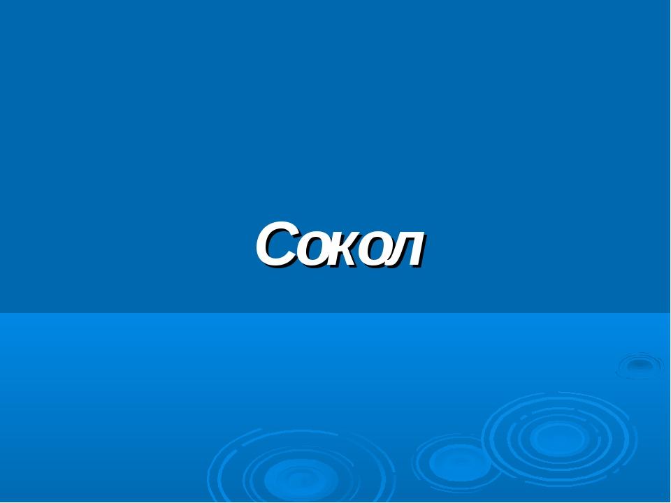 Сокол