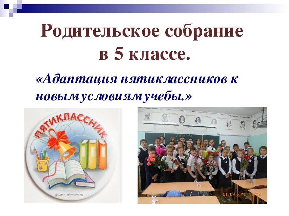 Родительское собрание в 5 классе. «Адаптация пятиклассников к новым условиям...