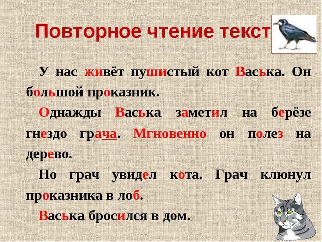 Повторное чтение текста. У нас живёт пушистый кот Васька. Он большой проказни...