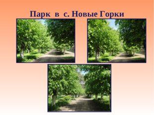 Парк в с. Новые Горки