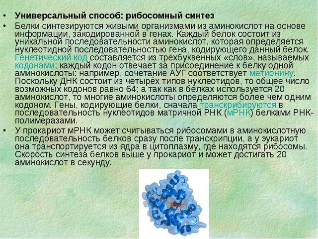 Универсальный способ: рибосомный синтез Белки синтезируются живыми организмам...