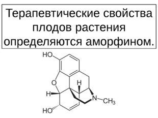 Терапевтические свойства плодов растения определяются аморфином.