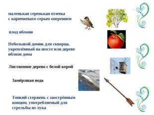 маленькая серенькая птичка с коричневато-серым оперением плод яблони Небольшо