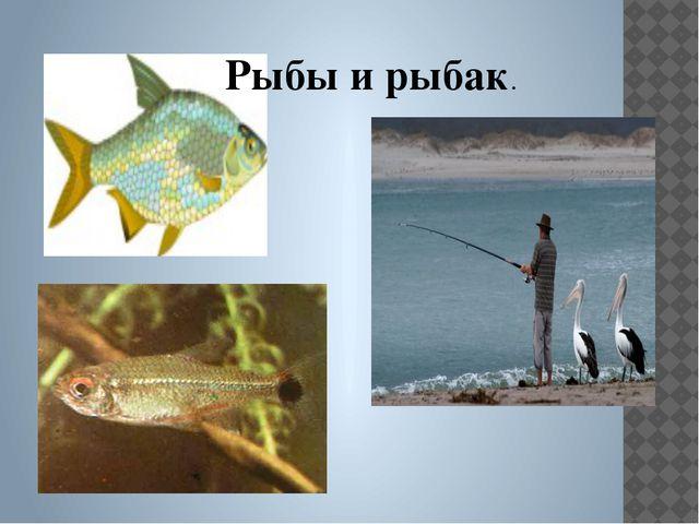 Рыбы и рыбак.