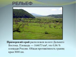 РЕЛЬЕФ Приморский край расположен на юге Дальнего Востока. Площадь— 164673