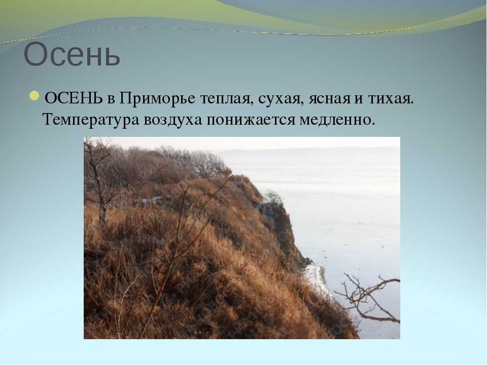 Осень ОСЕНЬ в Приморье теплая, сухая, ясная и тихая. Температура воздуха пони...