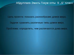 Абдуллаев Эмиль Гокум оглы 9 ,,Б'' Класс Цель проекта: показать разнообразие