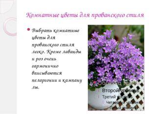 Комнатные цветы для прованского стиля Выбрать комнатные цветы для прованског