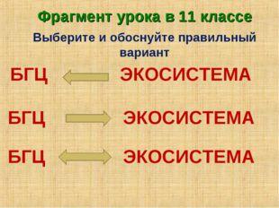 Выберите и обоснуйте правильный вариант БГЦ ЭКОСИСТЕМА БГЦ ЭКОСИСТЕМА БГЦ ЭКО