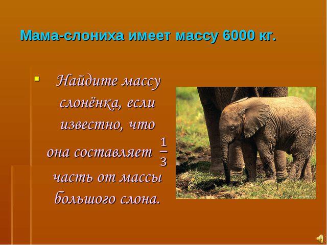 Мама-слониха имеет массу 6000 кг.