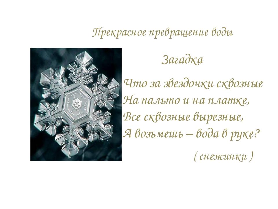 Прекрасное превращение воды Что за звездочки сквозные На пальто и на платке,...