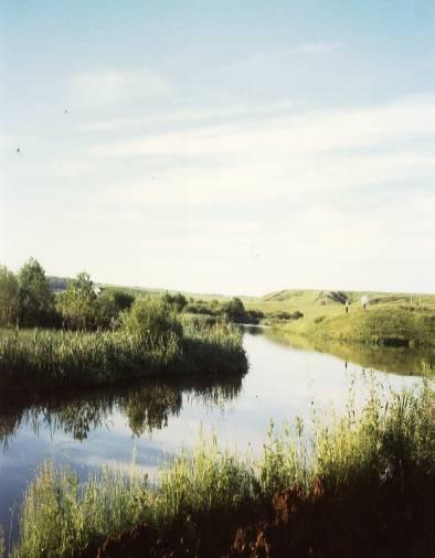 Копия Чаечное озеро