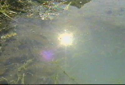 Отражение солнца в Барсаевском источнике