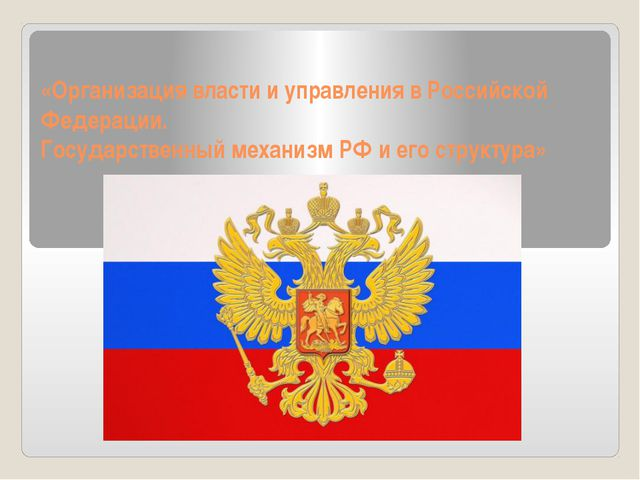 «Организация власти и управления в Российской Федерации. Государственный меха...