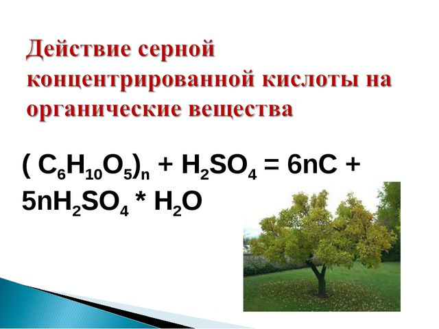 ( C6H10O5)n + H2SO4 = 6nC + 5nH2SO4 * H2O