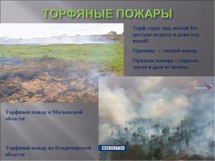 Торф горит под землей без доступа воздуха и даже под водой! Причина – лесной
