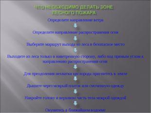 Определите направление ветра Определите направление распространения огня Выбе